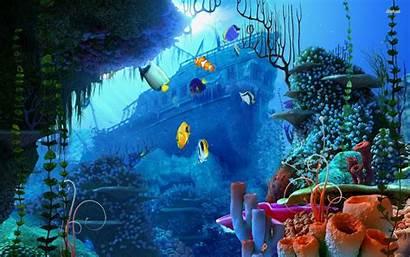 Underwater Ultra Desktop Wallpapers Backgrounds Resolution