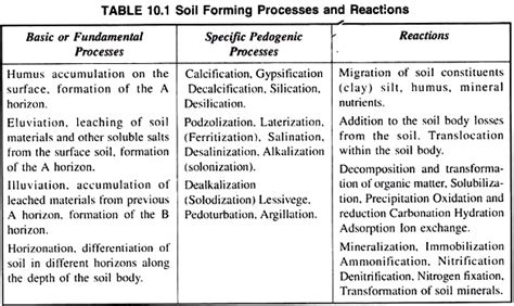 soil formation meaning factors  processes