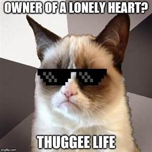 Musically Malicious Grumpy Cat - Imgflip