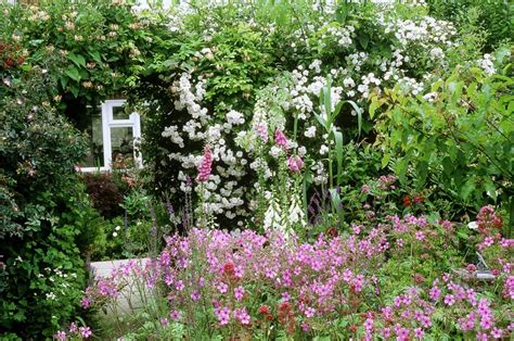Tiny Kitchen Design Ideas - flowers traditionally used cottage garden plants