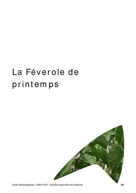 chambre agriculture 82 guide feverole 2016 by chambre d 39 agriculture manche ca50