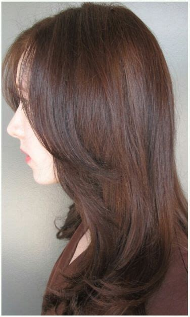 Brown Hair Or Hair On A by Ion Hair Color Search Junk Colors