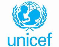 Social Policy Specialist at the United Nations International Children's Emergency Fund (UNICEF) – Bauchi & Sokoto