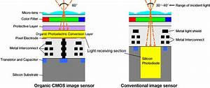 Organic Photo Sensor Dumps Silicon  Promises To Shatter