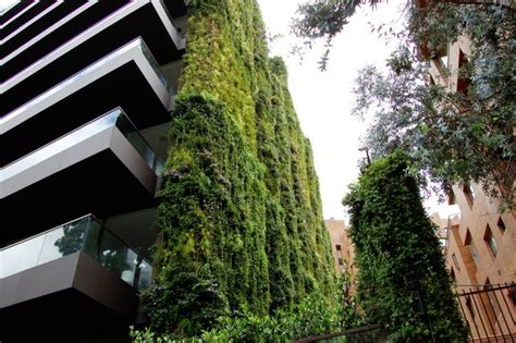 Largest Vertical Garden by World S Largest Vertical Garden Blooms In The Of Bogota