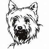 Clipart Terrier Dog Clip Yorkie Coloring Pages Boxer Puppy Dogs Harley Drawing Cliparts Drawings Scottie Cairn Yorkshire Davidson Wall Poo sketch template