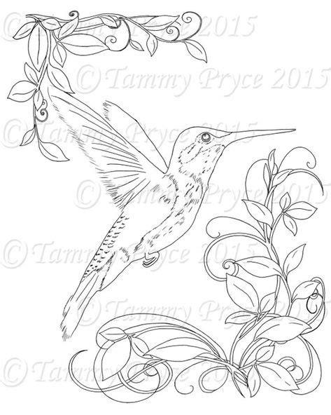 Pin on Bird drawings