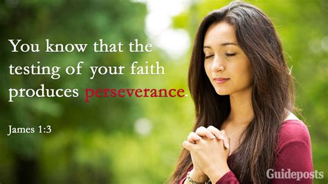 As you read these verses let the meaning of the word. Faith Perseverance Inspirational Bible Quotes