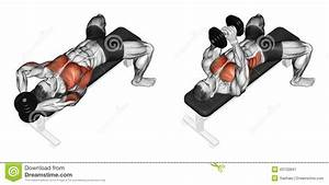 Exercising  Link Dumbbells From Behind The Head