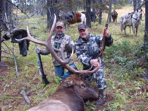 Anchor D High Mountain Hunts Horseback Elk Mule Deer