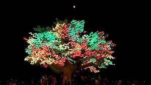 Tree Of T U00e9n U00e9r U00e9 - Burning Man 2017