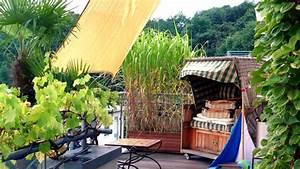 Pflanzen Sichtschutz Balkon : sichtschutz auf dem balkon durch pflanzen ratgeber garten ~ Eleganceandgraceweddings.com Haus und Dekorationen