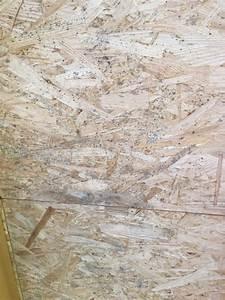Vinylboden Auf Osb Platten : osb platten verlegen bauen in eberstadt osb platten verlegt anleitung verlegen osb platten b ~ Whattoseeinmadrid.com Haus und Dekorationen