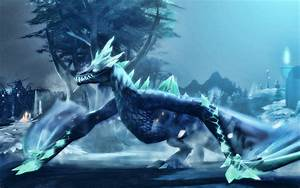 Download wallpa... Winter Wyvern Quotes