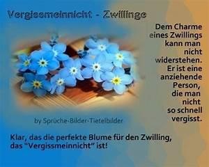 Was Für Ein Sternzeichen : zwillinge vergissmeinnicht spr che pinterest ~ Markanthonyermac.com Haus und Dekorationen