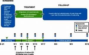 Study design. D day, FDG PET/CT 18F-fluorodeoxyglucose ...