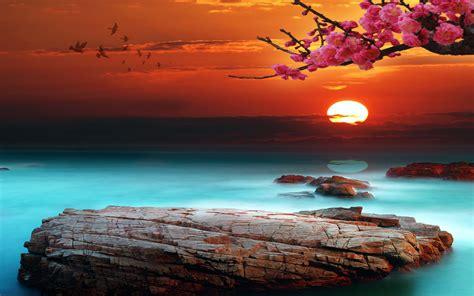 Sky Bright Sunset Desktop Background 333087 : Wallpapers13 com