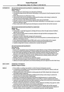 Head Business Development Resume Samples