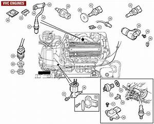 Mg Tf 160 Wiring Diagram