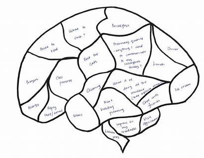 Brain Cartoon Drawing Blank Diagram Unlabeled Draw