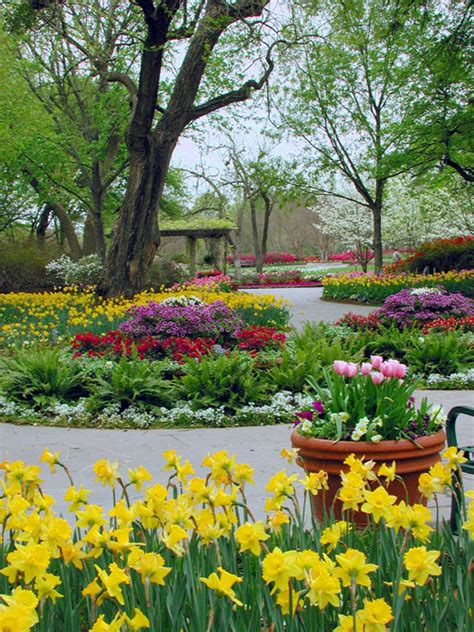 Dallas Garden by Dallas Botanical Garden The Saturday Evening Post