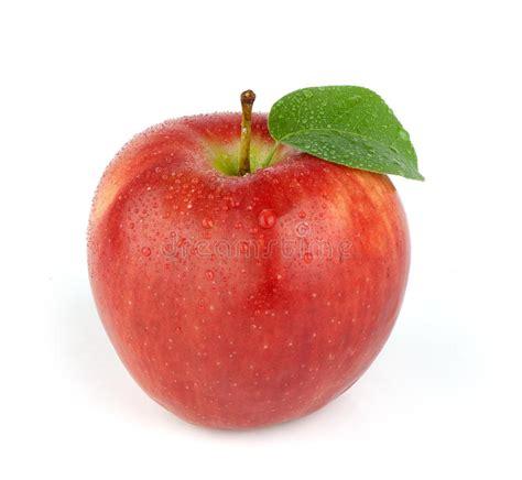 Manzana roja madura foto de archivo. Imagen de hoja ...