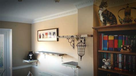 How To Make Homemade Diy Cat Shelves