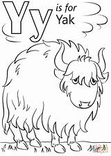Coloring Letter Yak Pages Cartoon Printable Alphabet Letters Preschool Crafts Supercoloring Super Sheets Outline Animal Abc Pluspng Template Yellow Select sketch template