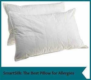 pillows good for allergies homes decoration tips With best allergy pillow covers