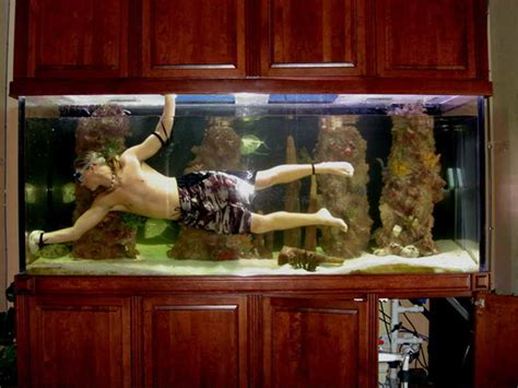 large fish tank decorations home accessories fish tank decoration pictures with the