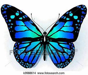 Drawings of Isolated butterfly of blue color k9988614 ...