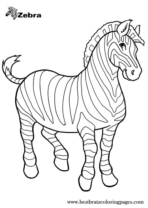 printable zebra coloring pages  kids coloring