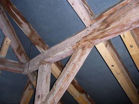 Risse Im Dachbalken by Dachpfetten Pr 252 Fen Und Ausbessern