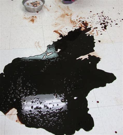 cat vomiting blood