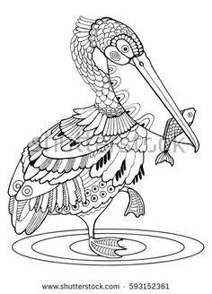 pelican307 in 2020 | Pelican art, Bird drawings, Zentangle