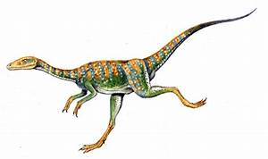 Compsognathus facts | Dinosaurs Pictures and Facts