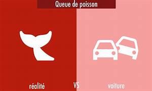 Queue De Poisson Voiture : les expressions automobiles infographie travelercar ~ Maxctalentgroup.com Avis de Voitures