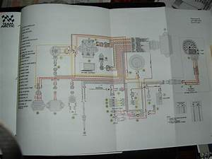 Wiring Diagram Electrical Switch