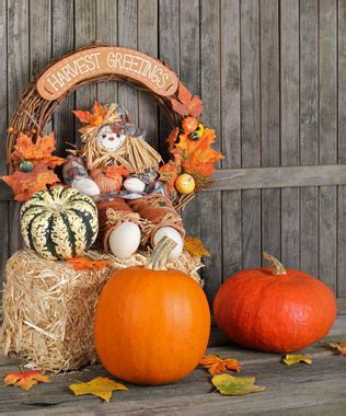 outdoor thanksgiving decorations