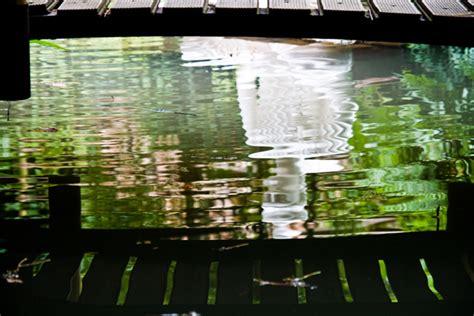 Botanischer Garten Andre Heller Gardasee by Andre Hellers Botanischer Garten Am Gardasee Frischebriese