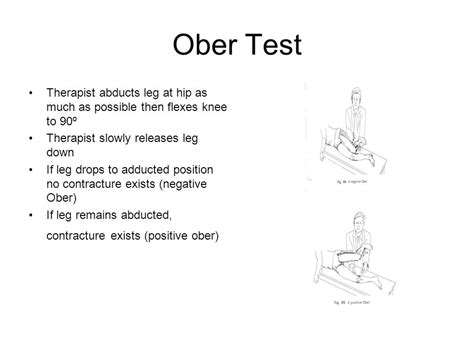 Hip and Pelvis Muscle Tests. - ppt video online download