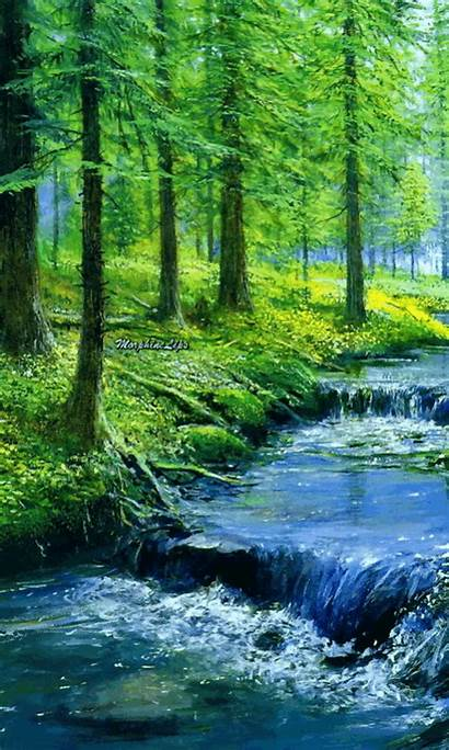 Forest Animated Nature Gifs River Waterfalls Scenery