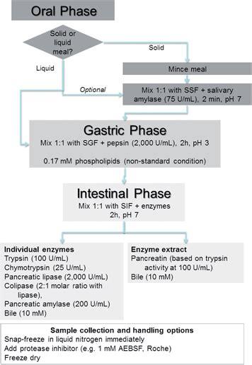 A Standardised Static In Vitro Digestion Method Suitable