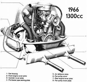 Thesamba Com    Beetle - 1958-1967 - View Topic - Vw Beetle 1966