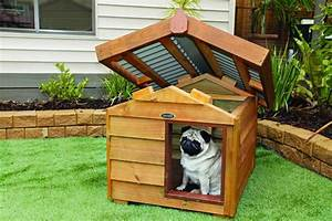 Adorable dog house designs for the comfortable living of for Dog house roof ideas