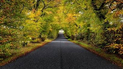 Road Scotland Trees 4k Autumn Uhd Garden
