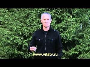 Препараты для повышения потенции днепропетровск