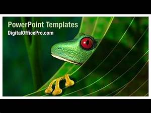 how to create a powerpoint template 2013 rainforest tree frog powerpoint template backgrounds