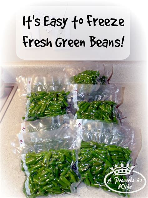 freezing fresh green beans how to freeze fresh green beans a proverbs 31 wife