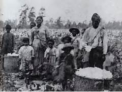 Born And Raised In The South      Slavery in Antebellum Georgia  Slavery In The South